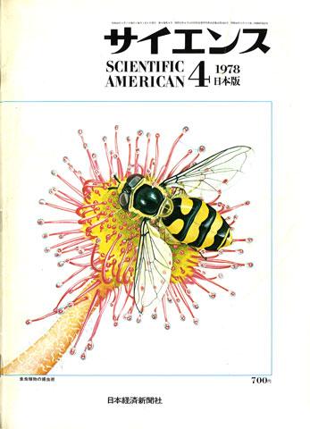 1978.03.25