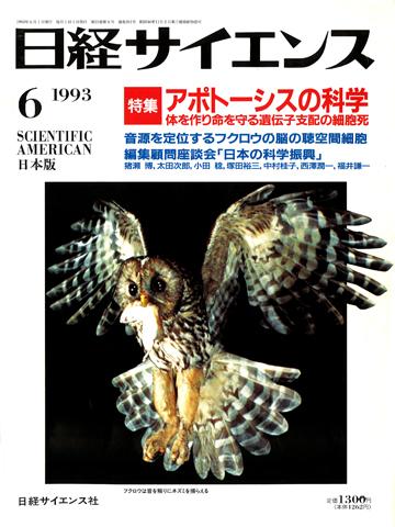 1993.6.25