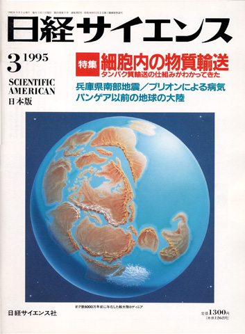 199503